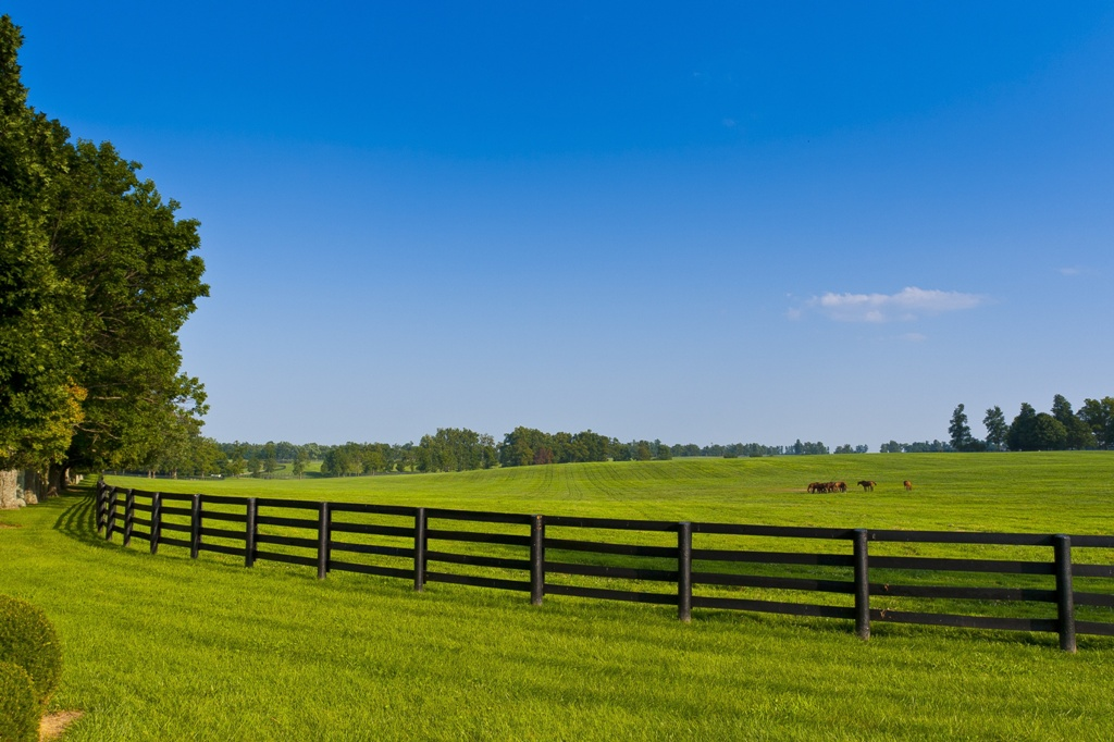 11959464 - green pastures of  horse farms