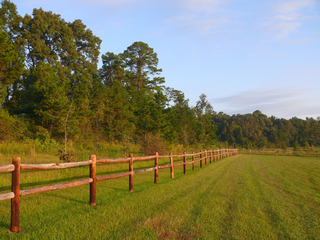 3483671 - country wood picket fence wth green grass