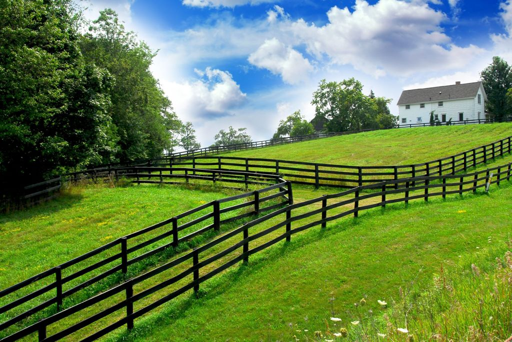 557753 - rural landscape with lush green fields and farm house